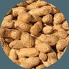 Erdnüsse als Eiweißquelle